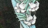 Wizerunek (66)